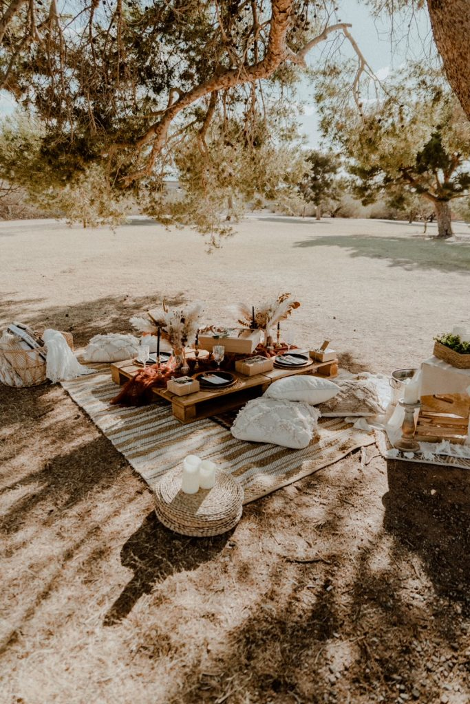 Boho backyard picnic setup